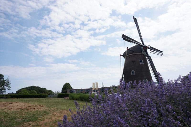 Mediation Groesbeek